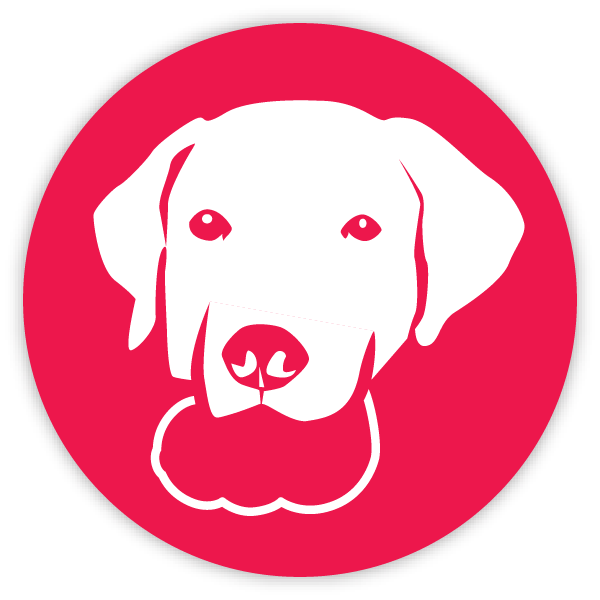 Chew toy icon red