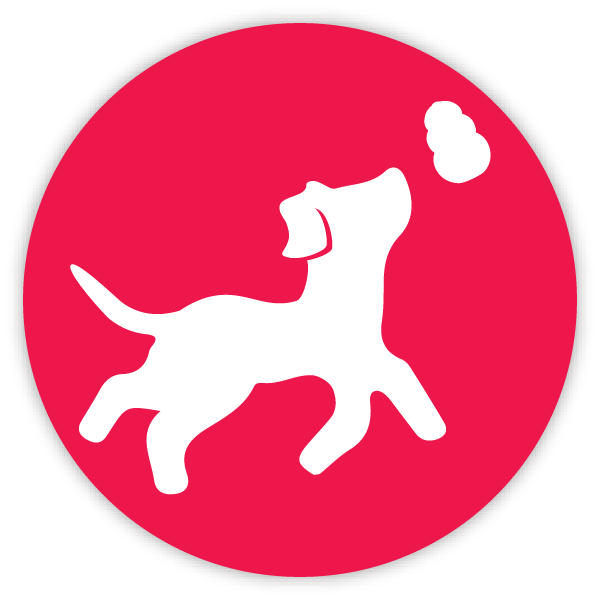 Fetch toy icon red